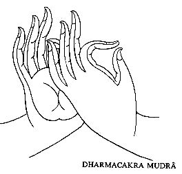 791d102cf1c2ef49d5bca6428cc8938c--buddhas-hand-the-hand