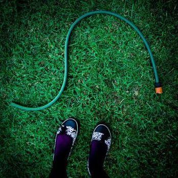 snake revealed as hose