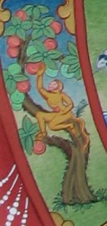 monkey grabbing fruit 12 lnks detail